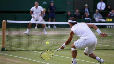 tenis w88